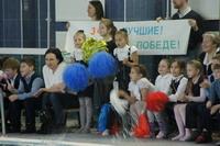 Соревнования по плаванию среди учащихся 1-4 классов «Веселый дельфин»